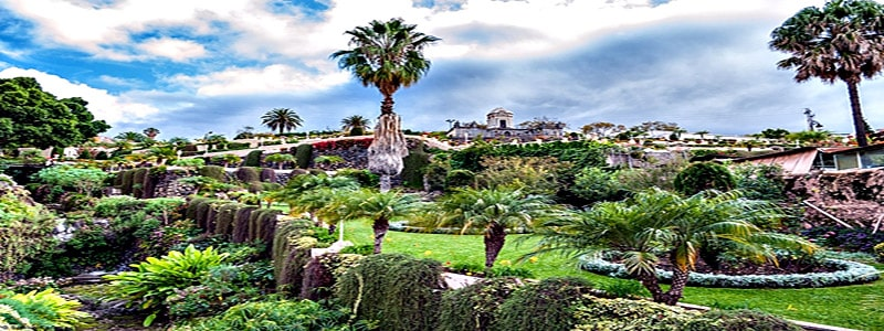 Jardín Botánico Viera y Clavijo de Las Palmas de Gran Canaria