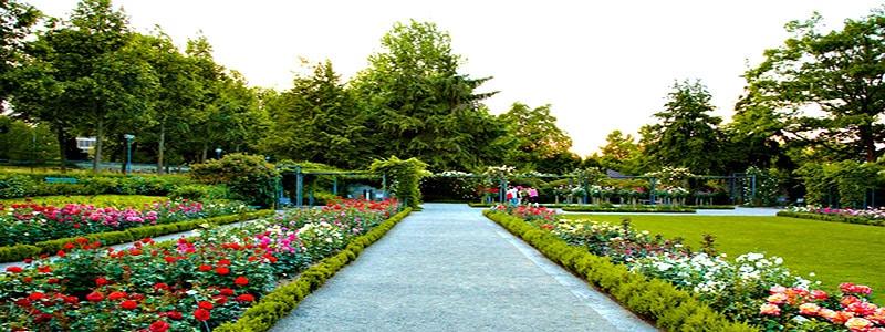 El Jardín de Rosas de Berna ¿Quieres conocerlo - Ilutravel