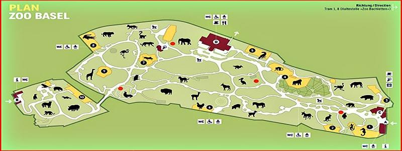 Zoológico de Basilea