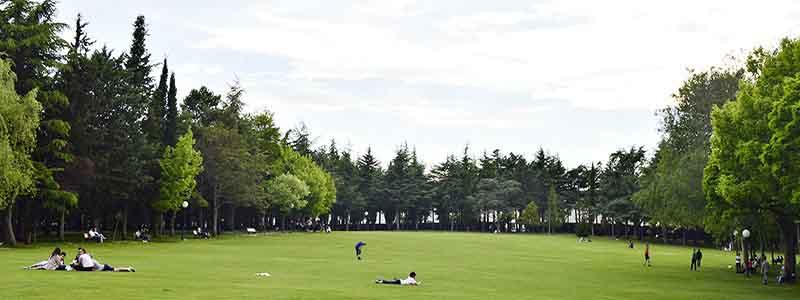 Parque Alameda de Cervantes La Dehesa de Soria
