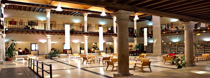 Palacio de Dávalos(es la biblioteca) de Guadalajara
