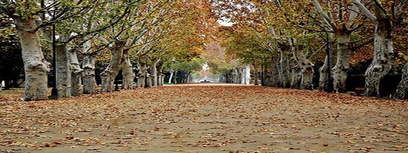 Parque Campos Eliseos de Lérida