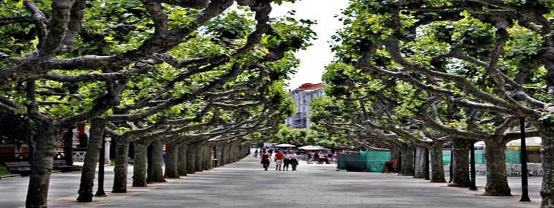Viajar a Burgos Paseo del Espolón – Ilutravel.com -Tu guía de turismo online
