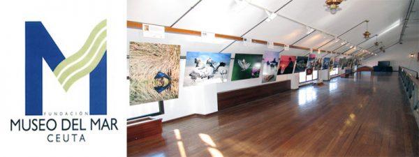 Fundación Museo del Mar de Ceuta