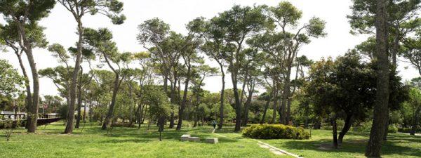 Parc Bosc