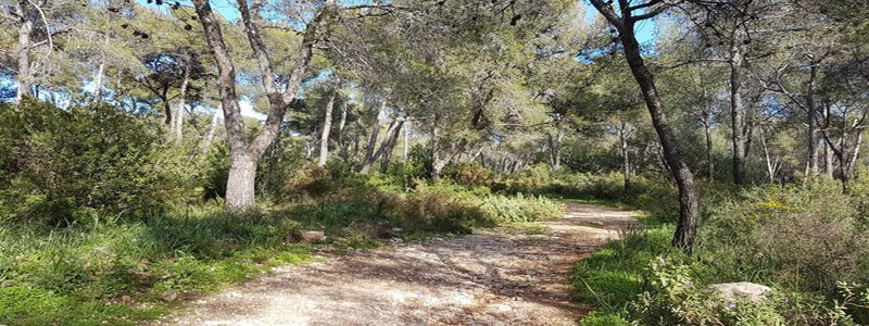 Parque de Nagüeles de Marbella - Ilutravel.com