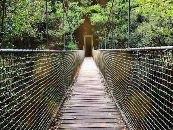Vista de un puente sobre las Fragas do Eume
