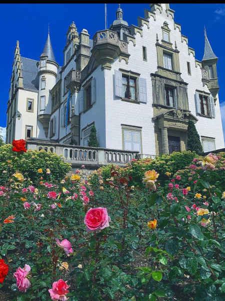 Meggenhorn Castle de Lucerna