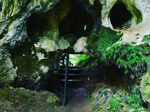 Foto de la entrada a la Cueva del Buxu en Cangas de Onís