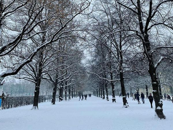 Parque de Hofgarten nevado en Bonn