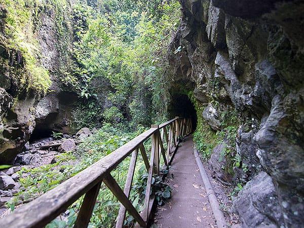 Cascada de los Tilos de La Palma - Ver La Palma de viaje - Ilutravel.com