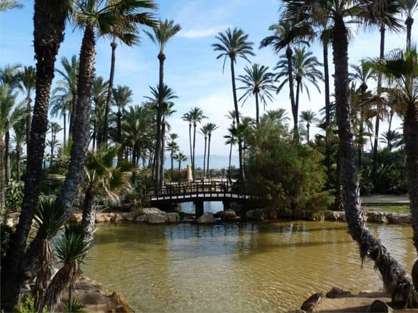 Parque de El Palmeral de Alicante - Sitios que visitar en Alicante - Ilutravel.com