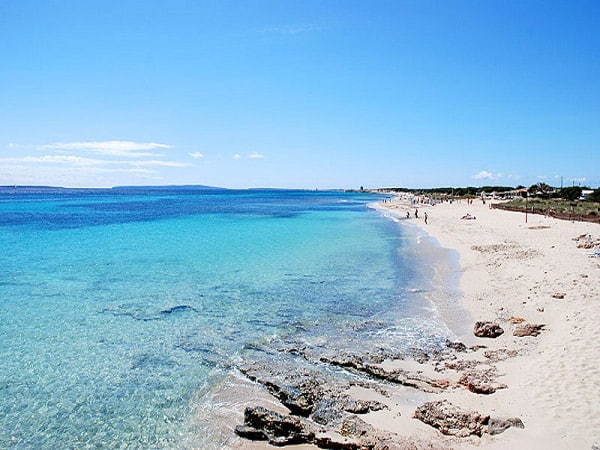 Playa de S'Alga de Isla S'Espalmador - Ilutravel.com