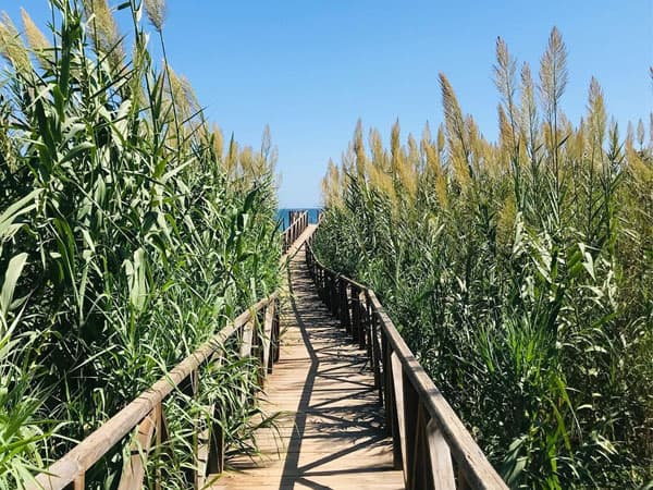 Acceso a Playa del Moncayo - Sitios que ver en Torrevieja y alrededores playas también - Ilutravel.com