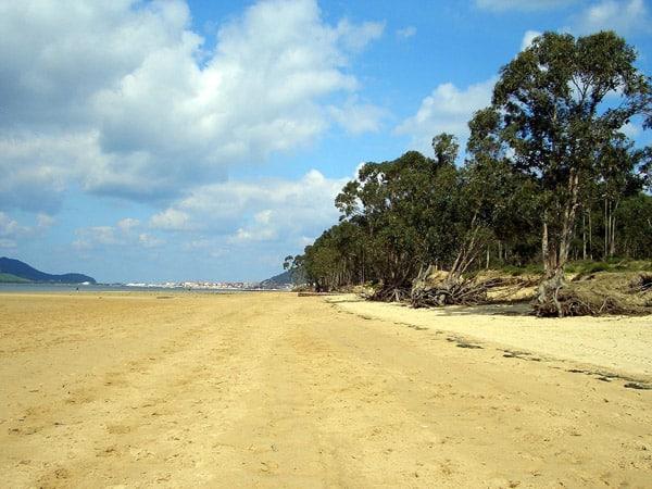 Playa del Regatón de Laredo - Visitala