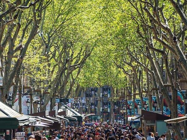 Rambla Barcelona - Sitios relevantes de Barcelona que conocer - Ilutravel.com