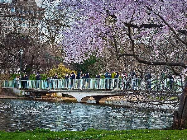 St James Park de Londres - Ver Londres de turismo y viaje - Ilutravel.com